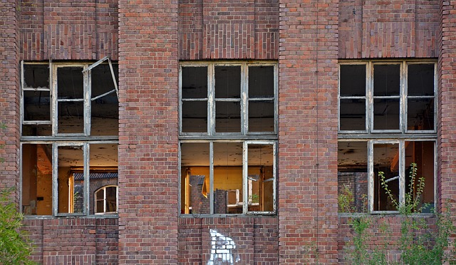 Lost Places, Factory, Pforphoto, Window, Old, Leave