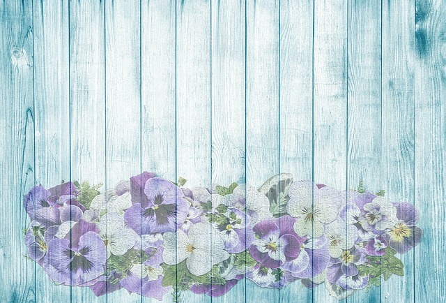 Pansy, On Wood, Summer, Turquoise, Blue, Wood, Flowers