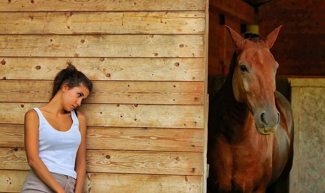 Wood, One, Of Wood, People, Nature, Horse, Stable