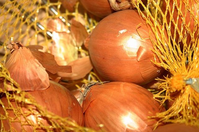 Onions, Network, Shell, Sharp, Cream Onion