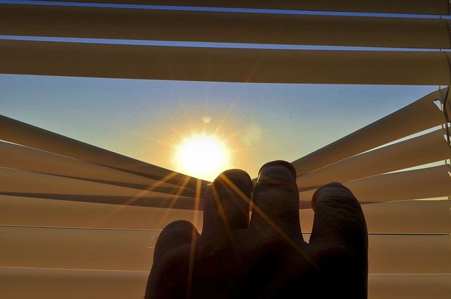 Blinds, Roller Shutter, Open, Gap, Look, Sun, Morning