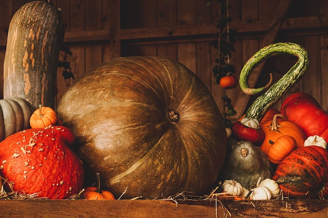 Still Life, Pumpkin, Autumn, Orange, Brown, Decoration
