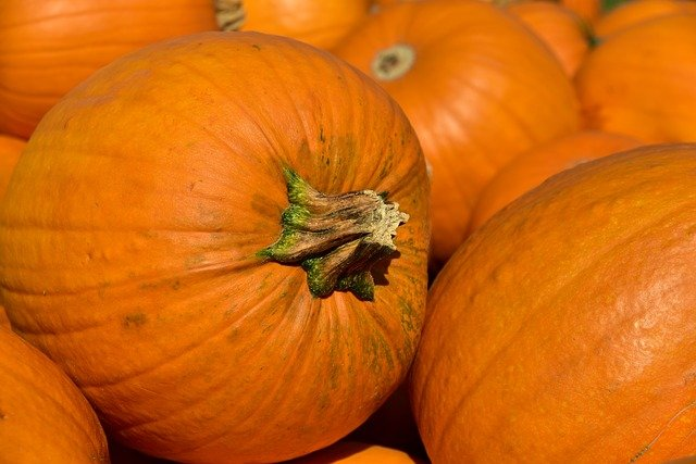 Pumpkin, Halloween, Autumn, October, Orange, Decoration