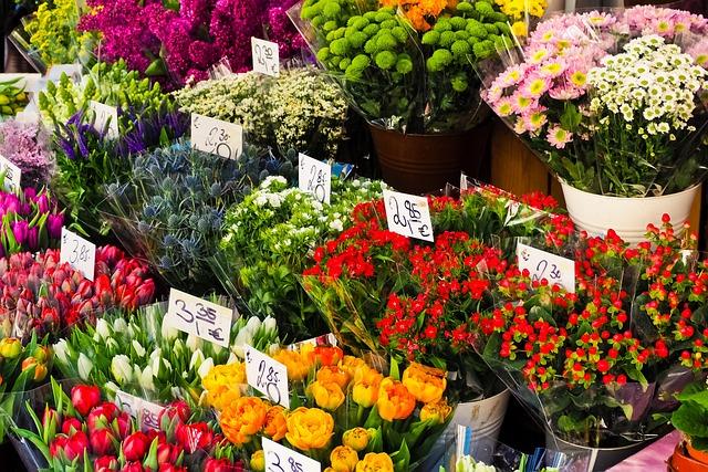 Flowers, Cut Flowers, Bouquet, Spring, Orange Flower