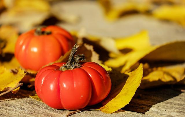 Tomatoes, Fruit, Orange, Ornamental Tomatoes
