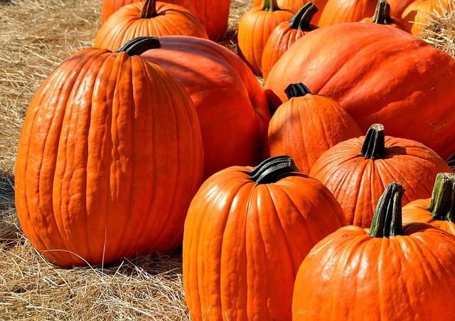 Pumpkins, Halloween, Autumn, Halloween Pumpkin, Orange