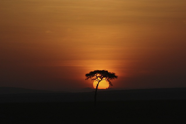 Sunset, Landscapes, Sunrise, Sky, Rays, Orange, Sun