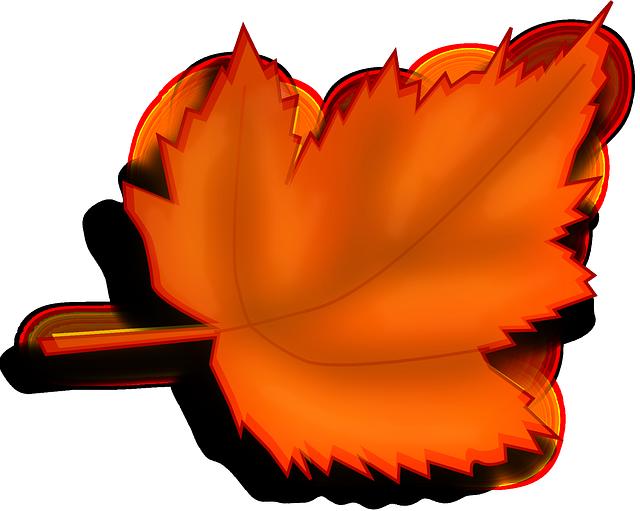 Maple, Autumn, Fall, Leaf, Orange, Shades