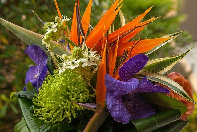 Flowers, Bouquet, Orchid