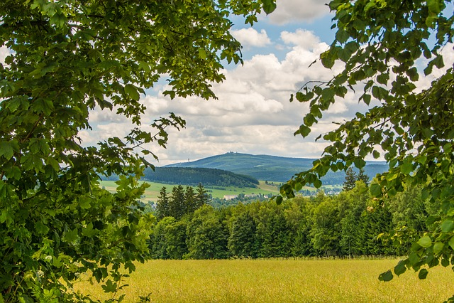 Ore Mountains, Summer, Fichtelberg, Keilberg