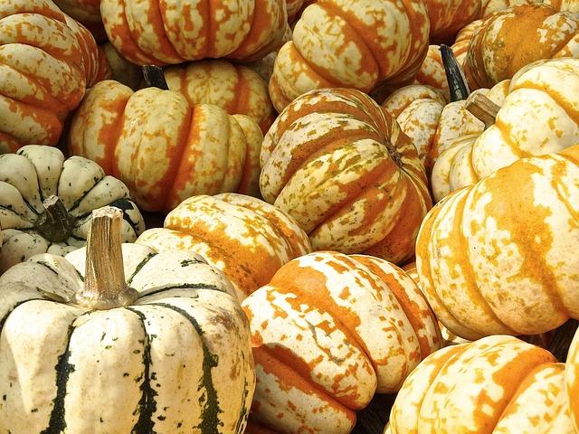 Pumpkins, Gourds, Harvest, Produce, Organic, Vegetables