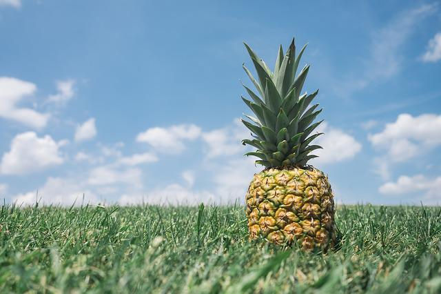 Pineapple, Green, Nature, Food, Healthy, Sweet, Organic