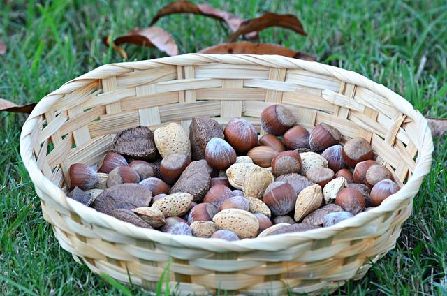 Nuts, Food, Healthy, Organic, Eating, Vegetarian, Seed