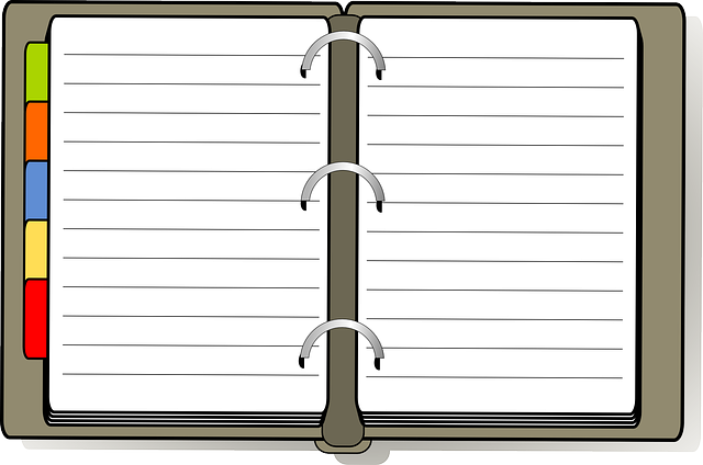 Organizer, Book, Diary, Open, Tabs, Pages, Lined