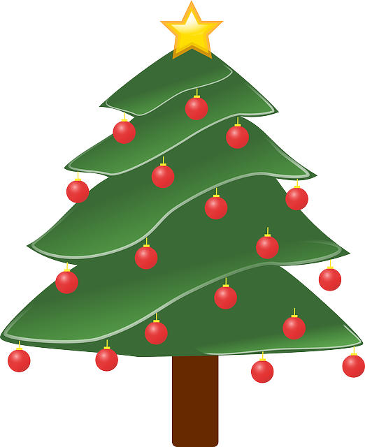Christmas Tree, Plant, Decorated, Decoration, Ornaments