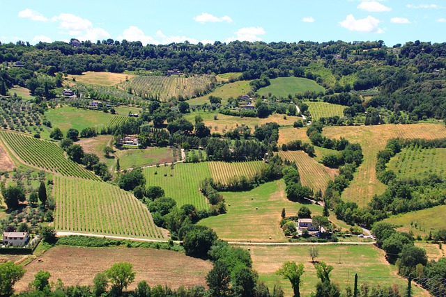 Orvieto, Umbria, Italy, Landscape, Wilderness, Scenery