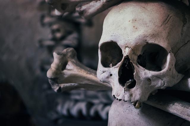 Skull, Ossuary, Czech Republic, Chapel Of All Saints