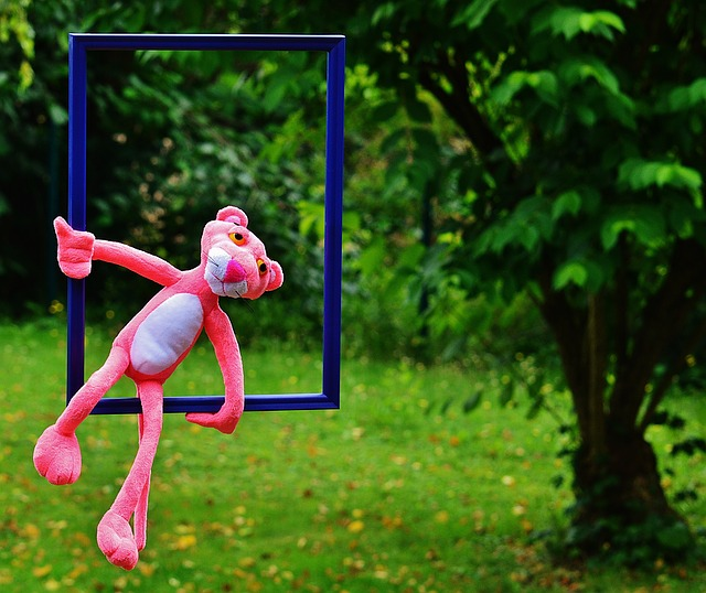 Out Of The Ordinary, The Pink Panther, Funny, Anders