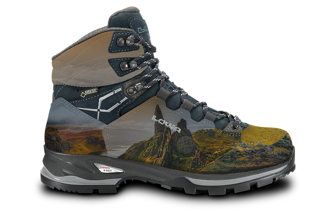 Shoe, Hiking Shoes, Hiking, Mountain Shoe, Outdoor