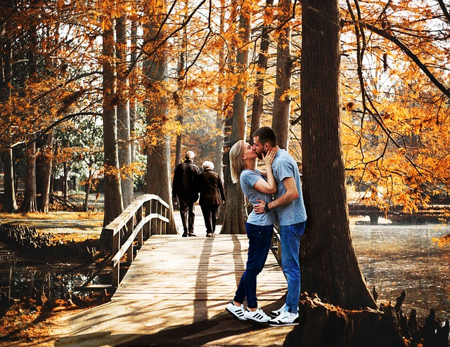 Fall, Wood, Tree, People, Outdoors, Park, Leaf, Nature