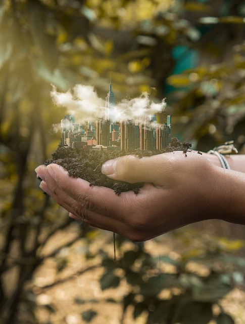 Outdoors, Nature, People, Tree, Adult