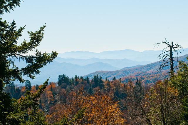 Outdoors, Park, Landscape, Smoky Mountains, Scenic