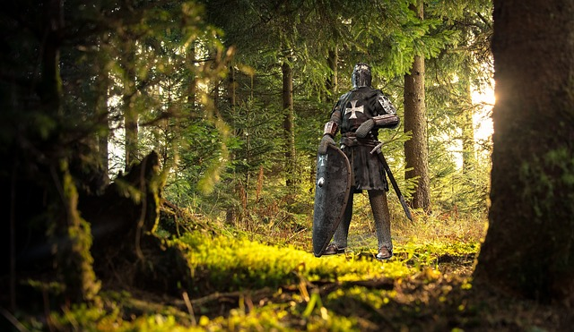 Wood, Nature, Tree, Outdoors, People, Knight, Medieval