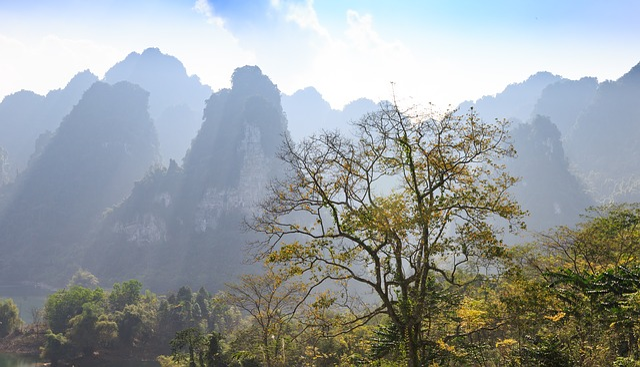 Nature, Mountain, Landscape, Tree, Outdoors, Beautiful