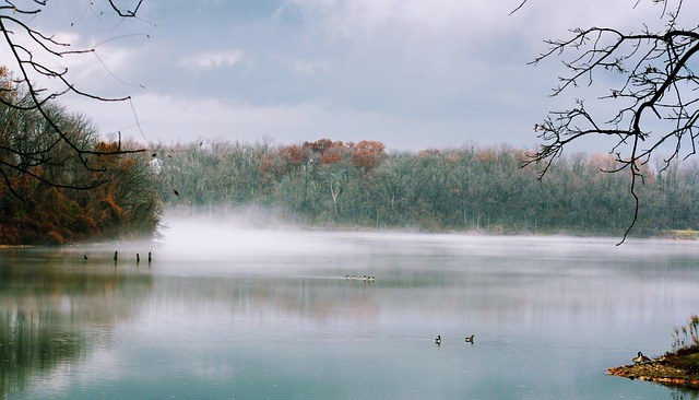 Nature, Water, Tree, Outdoors, Landscape, Lake, Fall