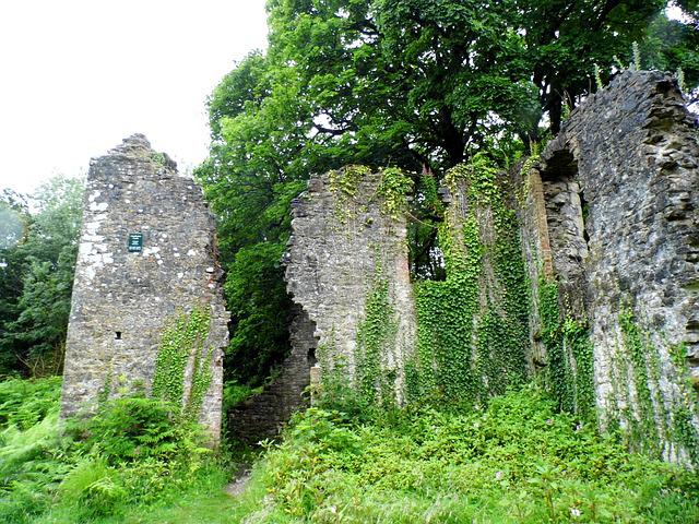 Castle, Overgrown, Ruins, Ogmore-by-sea, Southerndown
