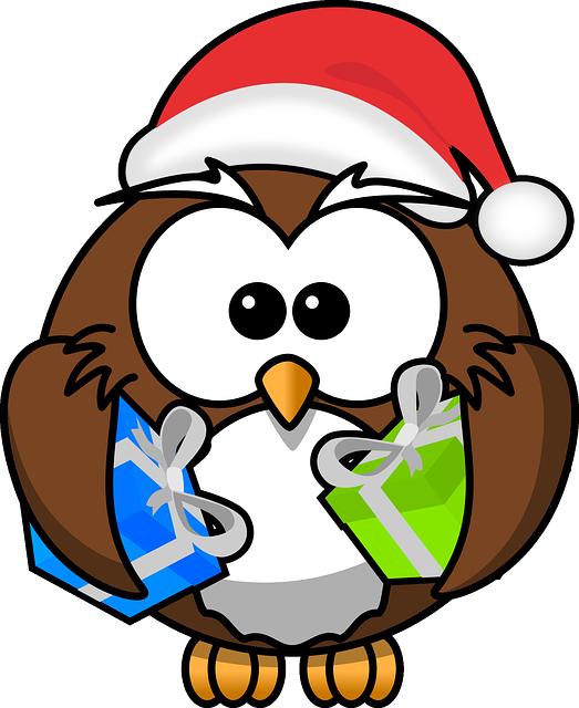 Owl, Santa, Animal, Bird, Christmas, Funny, Gift