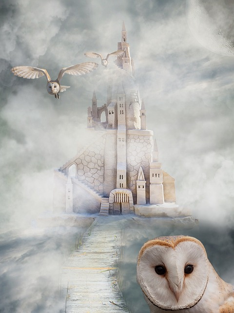 Castle, Owl, Fairy Tales, Mystical, Birds, View, Sky