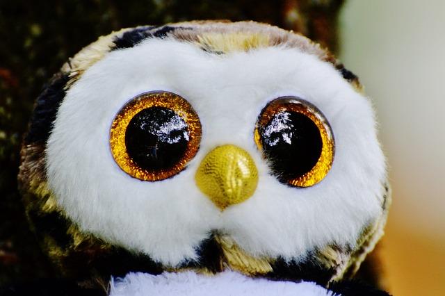 Owl, Glitter, Stuffed Animal, Cute, Goggle, Sweet