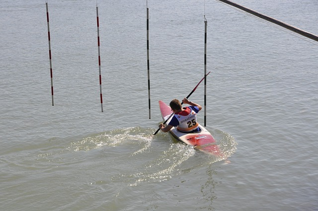 Canoeing, Paddler, Paddle, Kayak, Water, Paddle Boat