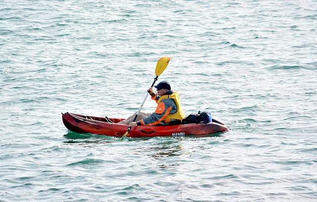 Canoe, Kayak, Water Sport, Water, Water Sports, Paddle