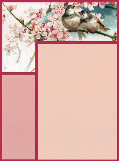 Scrapbook, Paper, Page, Frame, Stationary, Bird