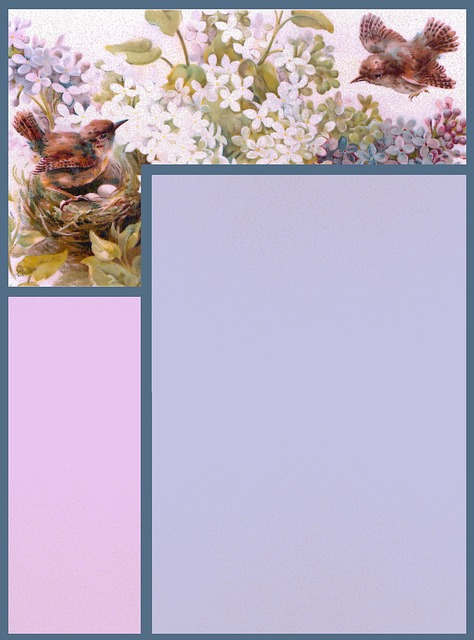 Scrapbook, Paper, Page, Frame, Stationary, Bird, Wren