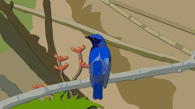 Vector, Bird, Wild Birds, Blue Bird, Paint, Animal