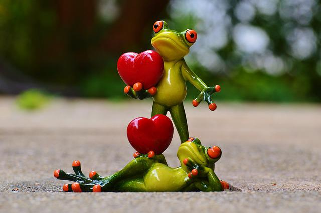 Frogs, Pair, Love, Valentine's Day, Pose, Heart, Funny
