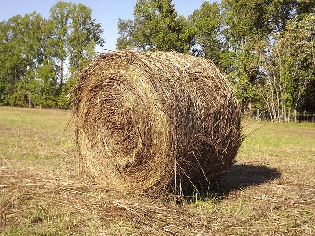 Haystack, Farm, Hay, Haystacks, Stack, Paja, Pajar