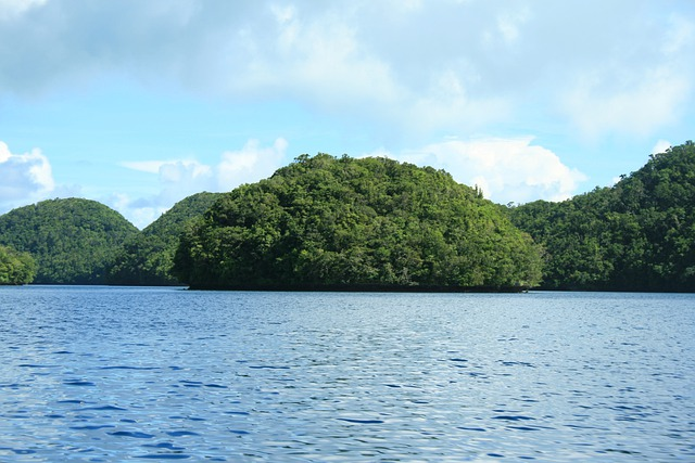 Islands, Water, Palau, Landscape, Wilderness, Scenery