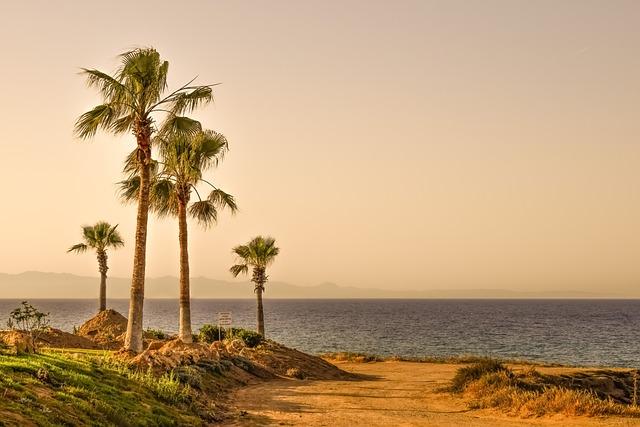 Palm Trees, Sea, Horizon, Landscape, Nature, Scenery