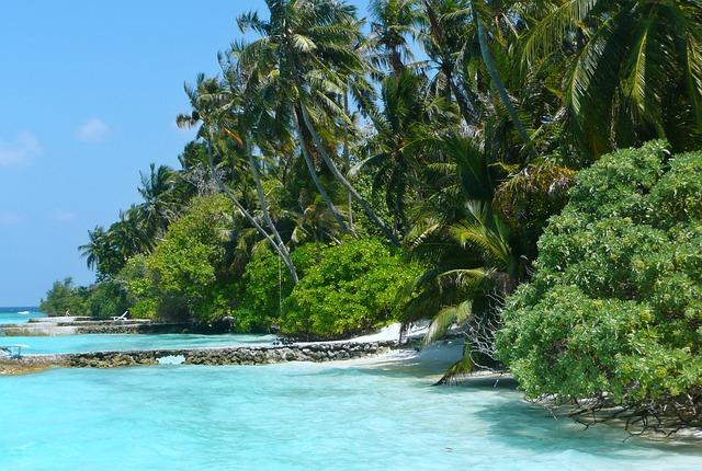 Maldives, Sea, Sea view, Holiday, Palm Trees