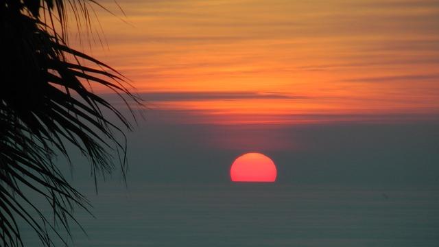 Sunset, Palma, Sea, Palm, Afterglow