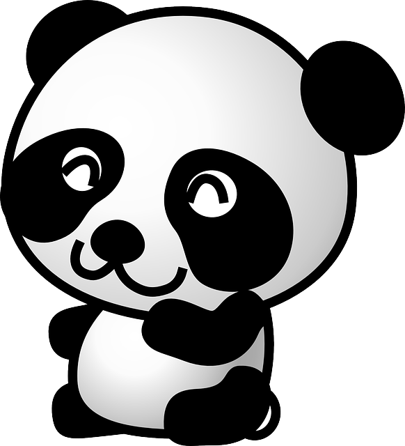 Panda, Bear, Animal, Cute, Baby, Black, White