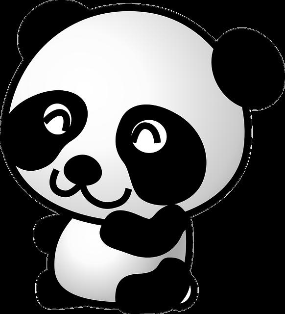 Panda, Bear, Animal, Cute, Baby, Black, White