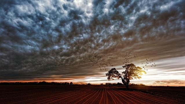 Nature, Panorama, Sunset, Landscape, Sky, Sun, Dusk