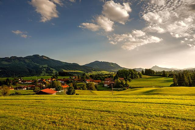 Panorama, Landscape, Nature, Tree, Field