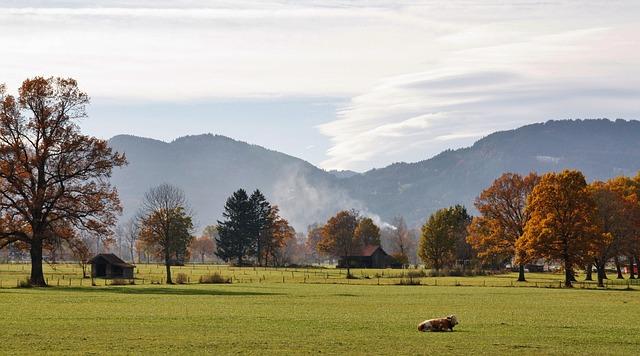 Nature, Landscape, Tree, Panorama, Grass, Sky, Autumn