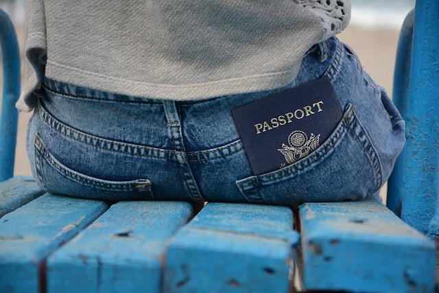 Pass, Passport, Id, Identity Card, Document, Pants